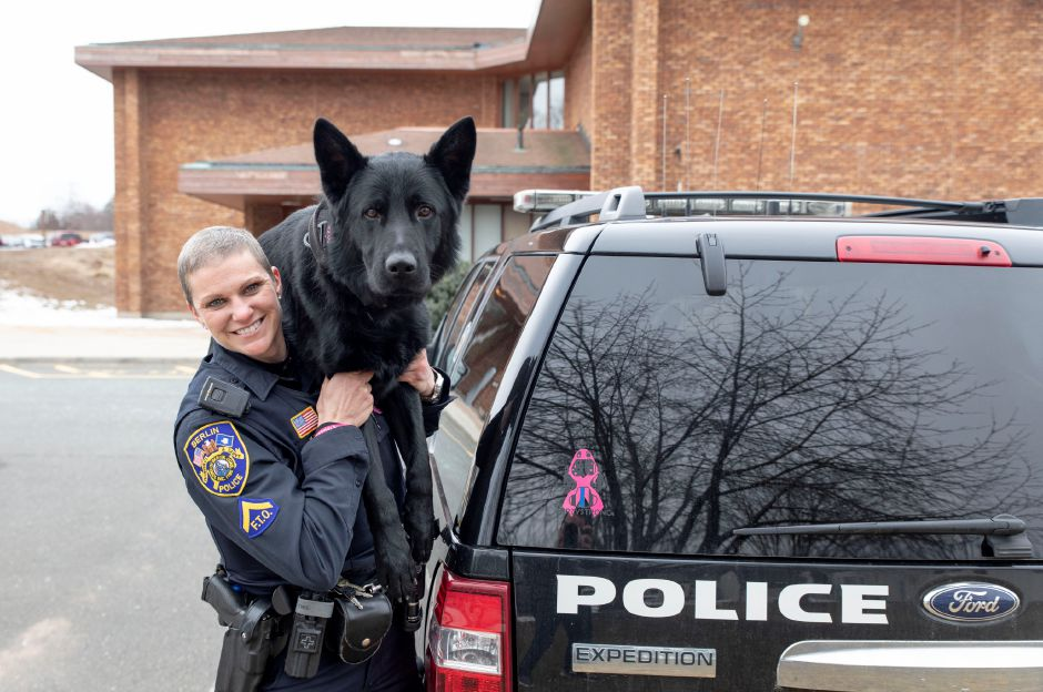 Berlin police officer Aimee Krzykowski returned to duty Feb. 26, 2019 after being on medical leave for cancer treatment. She is photographed in front of the department with her K-9 partner Casner. | Devin Leith-Yessian/Berlin Citizen