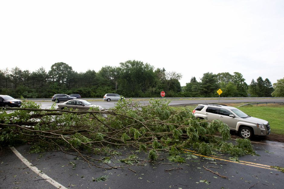 A vehicle goes around a fallen tree blocking the D.O.T. exit off Route 15 North in Meriden, Tuesday afternoon, June 23, 2015. | Dave Zajac/Record-Journal