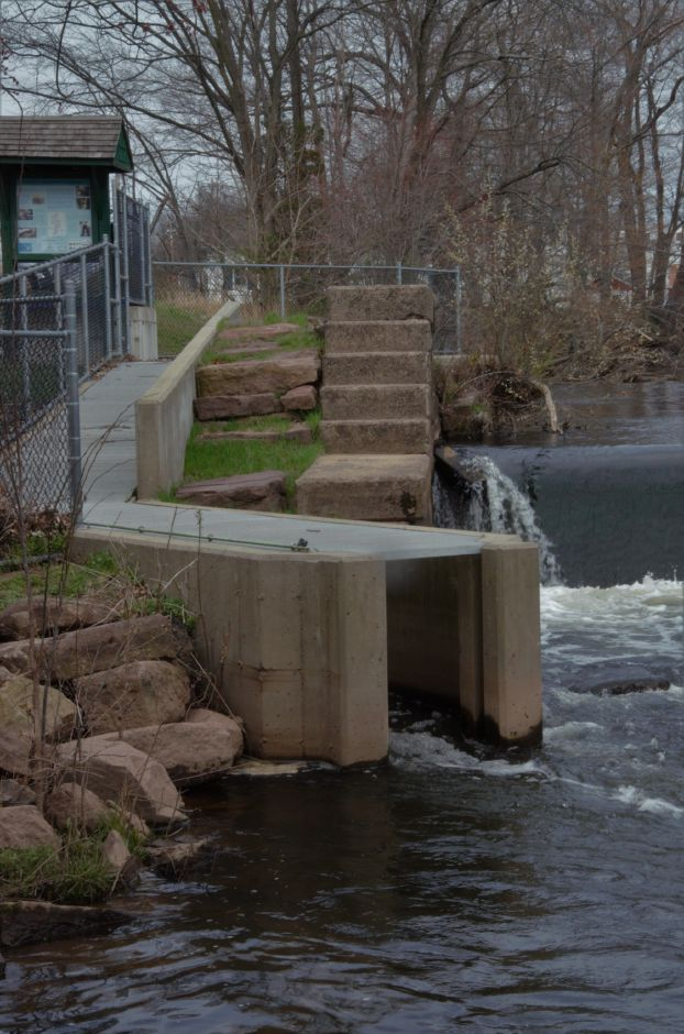 Haakonsen Fishway on the Wallace Dam in Wallingford, Conn. on April 19th, 2019. | Maxine Philavong, Special to the Record Journal.