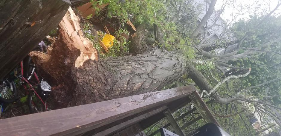 A fallen tree just barely missed a Meriden home. | Photo courtesy of David Ortiz
