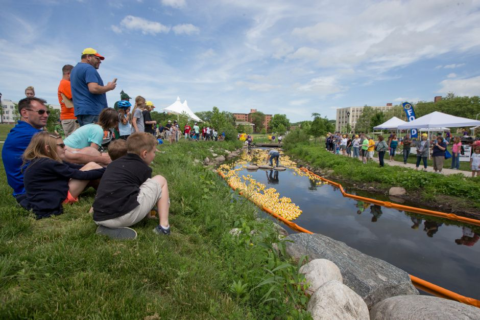 Spectators line the banks of Harbor Brook to watch the race Sunday during the 24th annual Meriden Lions Club Duck Race at the Meriden Green in Meriden June 3, 2018 | Justin Weekes / Special to the Record-Journal
