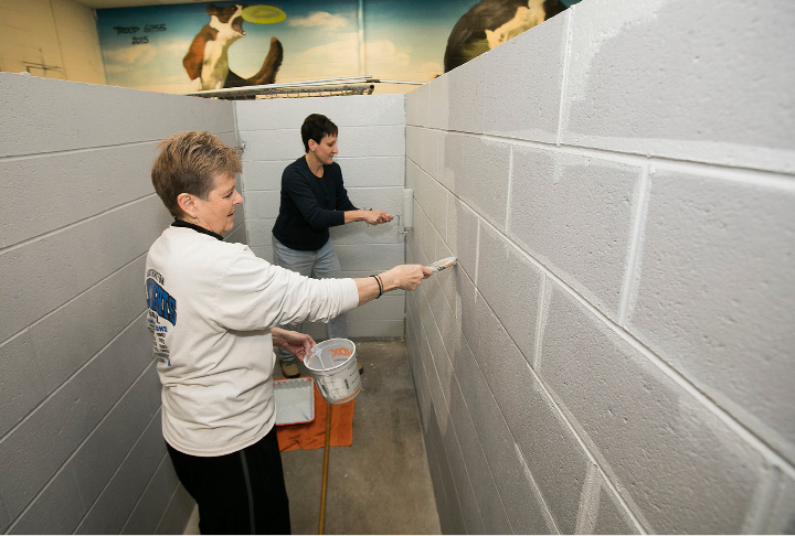Volunteers Michele Boisvert, left, and Valerie DePaolo, of Southington, paint a kennel at the Southington dog pound.
