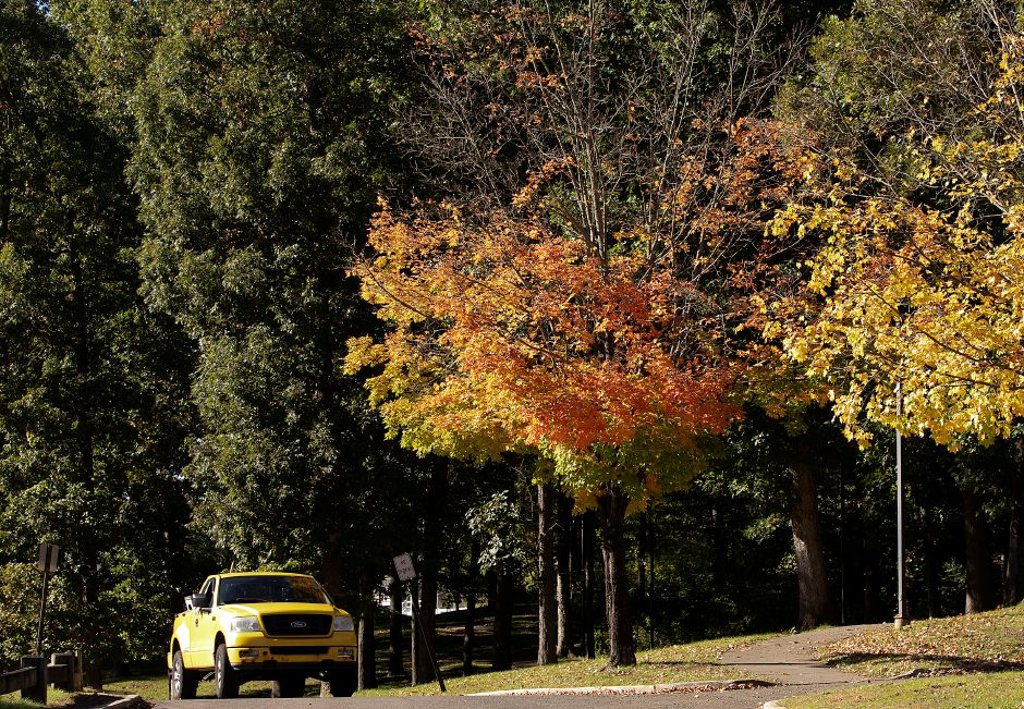 A few trees at Falcon Field in Meriden have lost leaves while the majority remain green, Friday, Oct. 12, 2018. Foliage is running about two weeks later than normal in Connecticut according to Christopher Martin, state forester for the Connecticut Department of Energy and Environmental Protection. Dave Zajac, Record-Journal