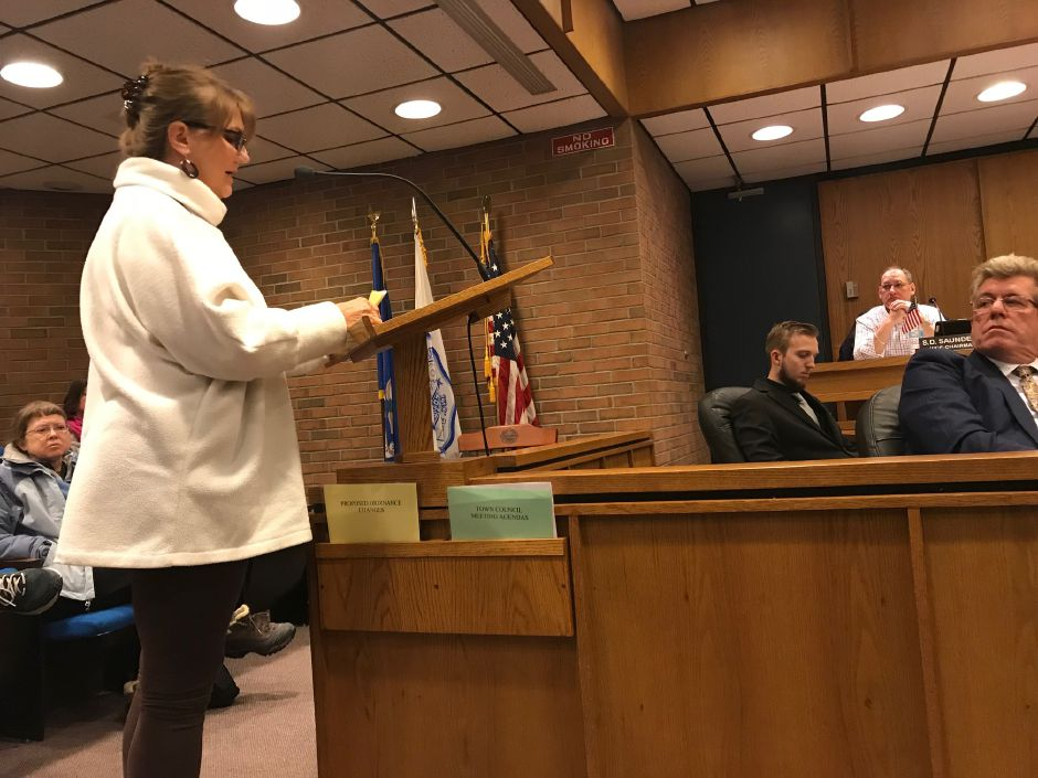 Residents spoke at a public hearing Tuesday night concerning the location for a dog park. |Ashley Kus, The Citizen