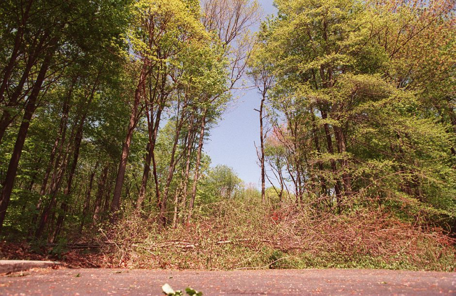 RJ file photo - Open land at the end of Pierson Drive, where Councilor Rys lives. The property is being proposed for open space, May 1998.