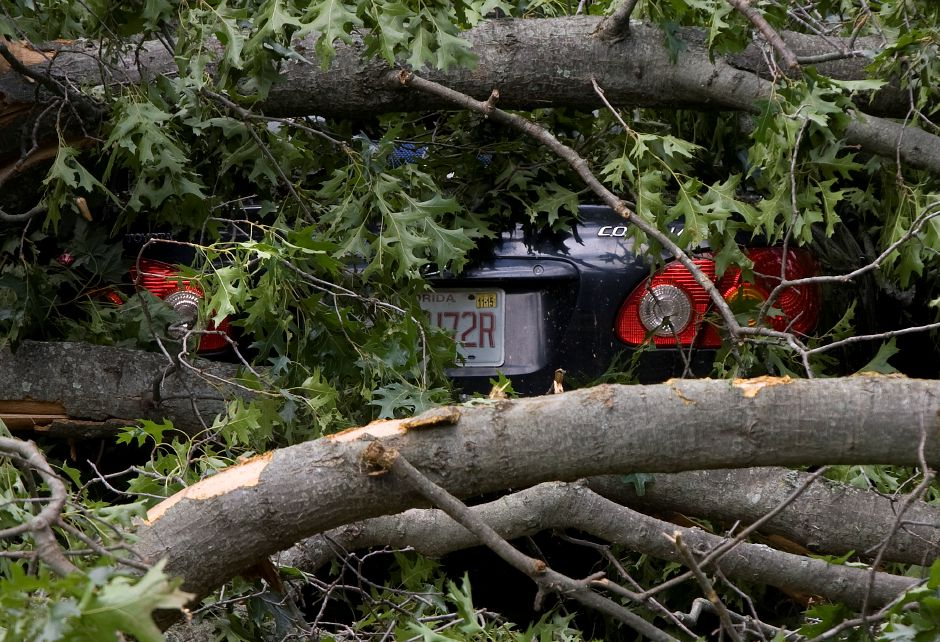 A car is buried under a large tree that fell in the front yard of 1980 Hartford Turnpike in North Haven, Wednesday, June 24, 2015. | Dave Zajac / Record-Journal