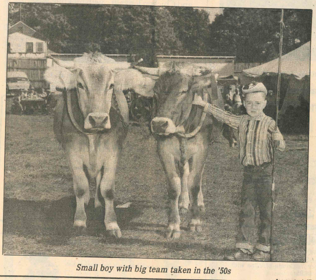 Small boy with big team taken in the '50s. | Record-Journal Archives