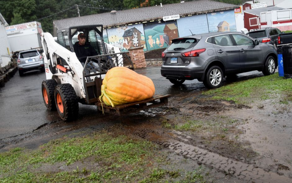 A pumpkin is transported on delivery and weigh-in day on Tuesday, Sept. 25, 2018, on the Durham Fairgrounds. The pumpkins will be available for viewing all weekend during the fair. | Bailey Wright, Record-Journal