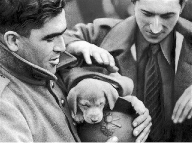 A bewildered, sleepy pup was adopted by these friendly poilus when the French army moved into position somewhere along the Western Front in France on Sept. 21, 1939. (AP Photo)