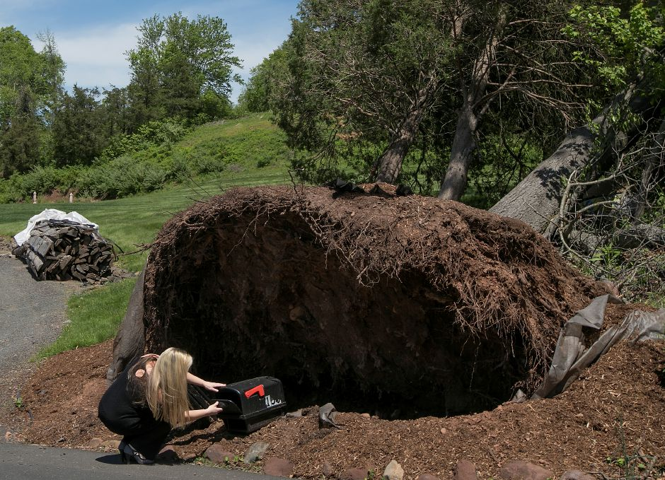 Stacey DiNuzzo, of Wallingford, checks for mail under a fallen tree at her Northford Road residence in Wallingford, Monday, May 21, 2018. Last Tuesday