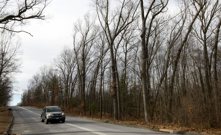This file photo shows a wooded area along Laning Street near Doral Lane in Southington, Tuesday, Jan. 19, 2016. A developer is requesting to connect to a town sewer line in order to build condominiums on the site. | Dave Zajac, Record-Journal staff.