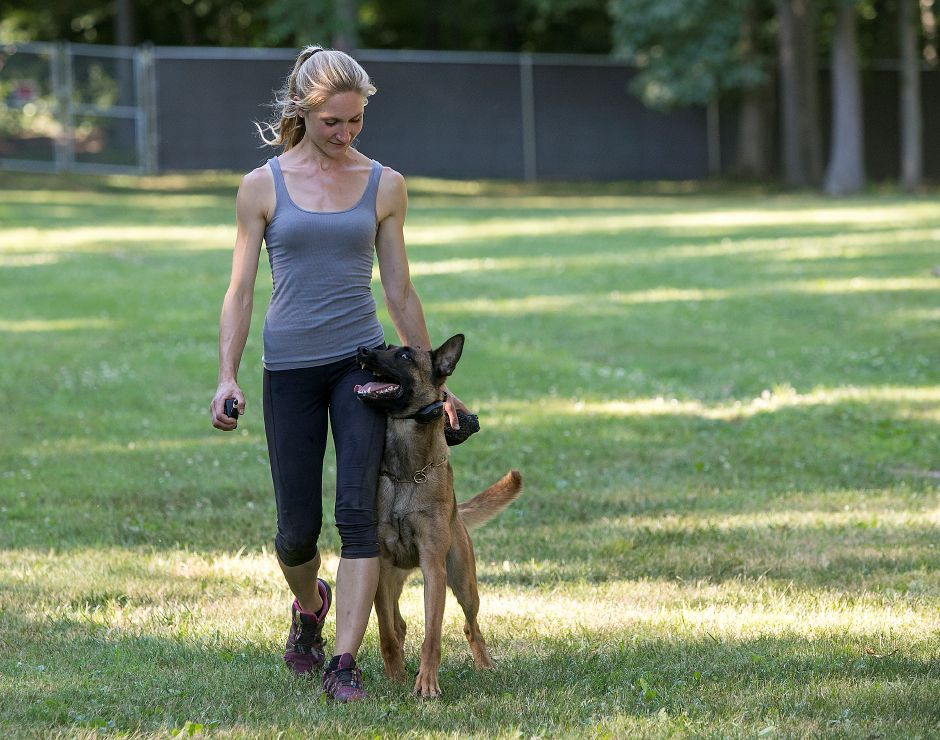 "Samantha Smith, owner of Integrity K9 Training, works with 3-year-old Belgian Malinois, ""Inferno"" at the new dog training facility in Durham, Monday, July 9. Dave Zajac, Record-Journal"