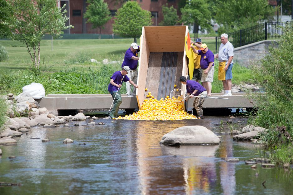 Lions Club members start the duck race Sunday during the 24th annual Meriden Lions Club Duck Race at the Meriden Green in Meriden June 3, 2018 | Justin Weekes / Special to the Record-Journal