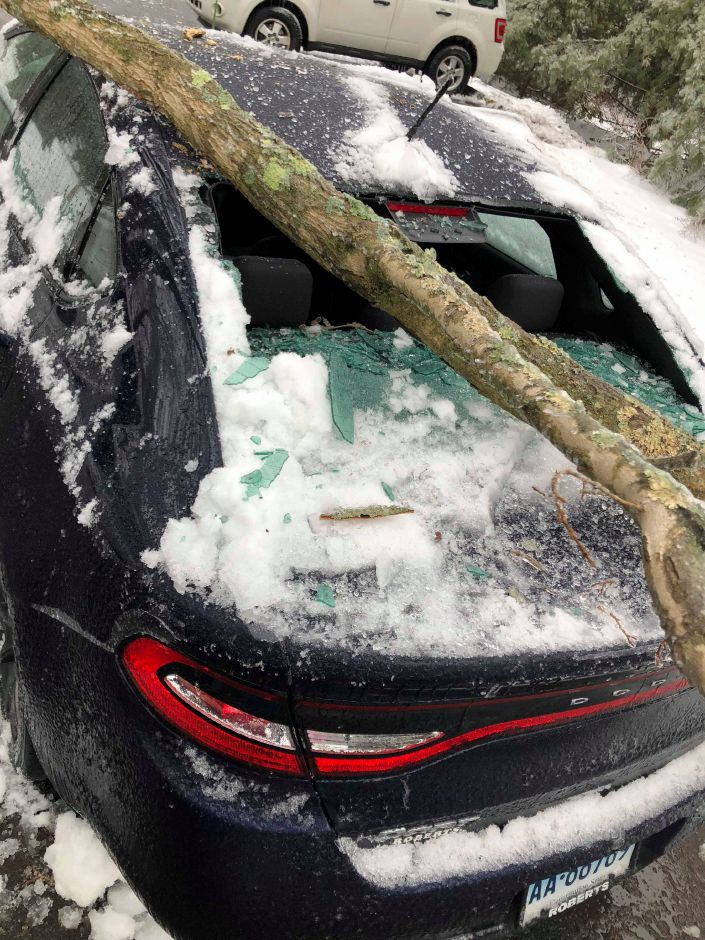 A tree fell on a car at a Mansion Road residence in Wallingford following Sunday's snow and ice storm. | Courtesy of Cathy Corves Chagnon