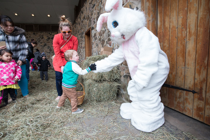 FILE PHOTO -- An Easter egg hunt in Meriden in March 2016 | Justin Weekes / For the Record-Journal