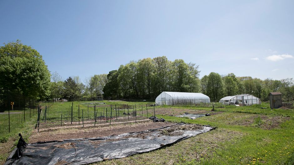 Boulder Knoll Community Farm in Cheshire, Monday, May 14, 2018. It