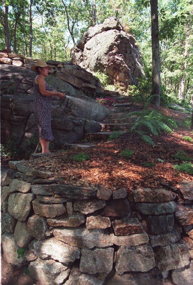 Linda Renaud waters ferns that line the steps up to one of her rock gardens at her Southington home. Linda and her husband have used large construction equipment to built their rock gardens which now have a wide variety of plants and flowers growing around them, Aug. 1999.