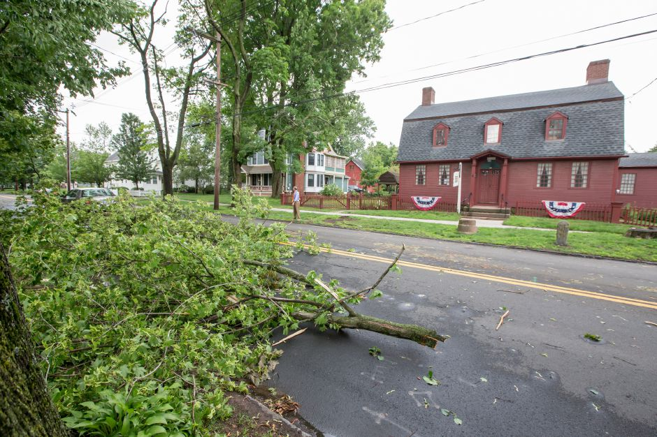 Traffic was closed down to one lane on South Main Street between Ward and Prince Streets as a limb fell Tuesday in Wallingford Jun. 23, 2015 | Justin Weekes / For the Record-Journal