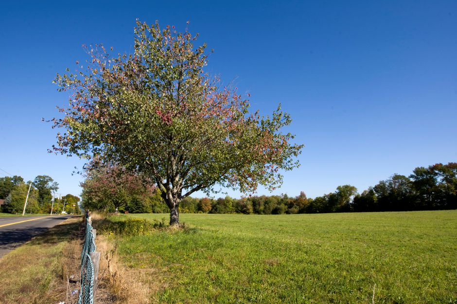 Property bordering West Queen St. across from the Southington Water Department, Friday, September 26, 2014. A field located behind the tree line, far right, is the property proposed for a sports complex. | Dave Zajac / Record-Journal
