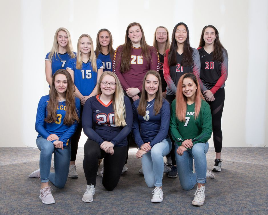 The 2018 All-Record-Journal Girls Volleyball Team features, in front, left to right, Wilcox Tech's Chloe LaBissoniere, Lyman Hall's Nicole Albert, Platt's Caitlyn Hart and Maloney's Laila Martinez. In the back row, from left, are Southington teammates Haley Larrabee, Lynsey Danko and Jenna Martin, Sheehan's Caitlyn Hunt and Cheshire teammates Mia Juodaitis, Jenny Wang and Lindsey Abramson. Justin Weekes, special to the Record-Journal