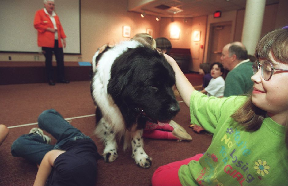 RJ file photo - Tenni, a Newfoundland member of Connecticut Canine Search and Rescue, gets a tentative pat on the head from Jennifer Smith, 10, at the Wallingford Public Library May 8, 1998.