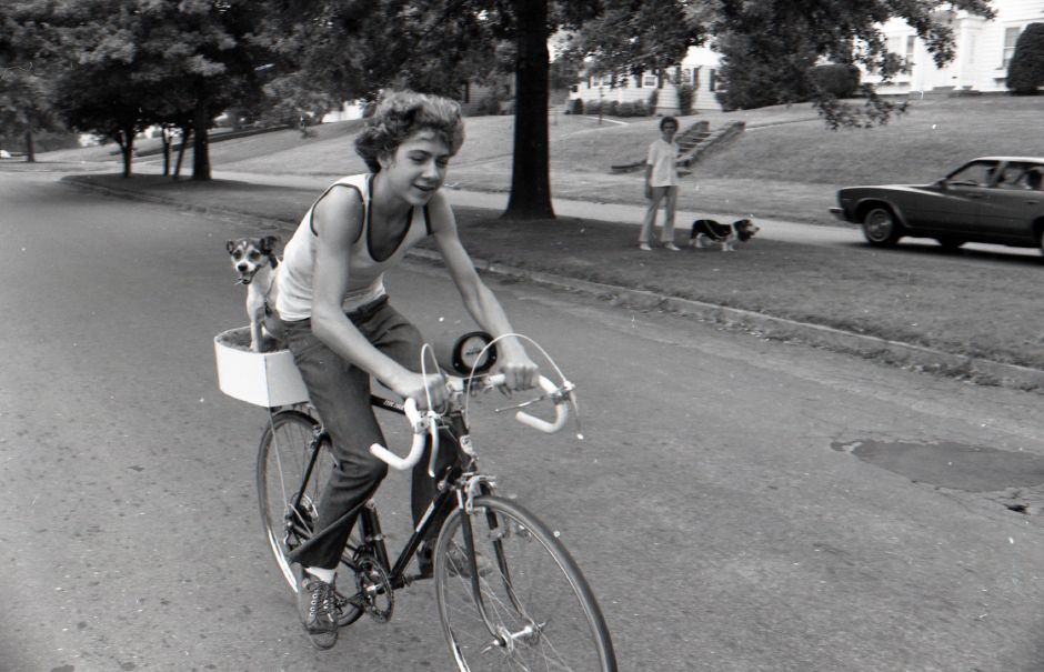 A child rides a bike on Parker Avenue in  with a happy dog on the back in a custom-built seat lined with red carpet in Meriden, July, 1975.