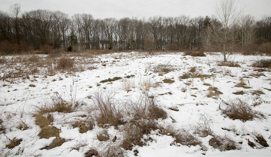 Area of a proposed 40-unit age-restricted complex off Wonx Spring Road and Hunters Lane in Southington, Monday, Dec. 18, 2017. Dave Zajac, Record-Journal