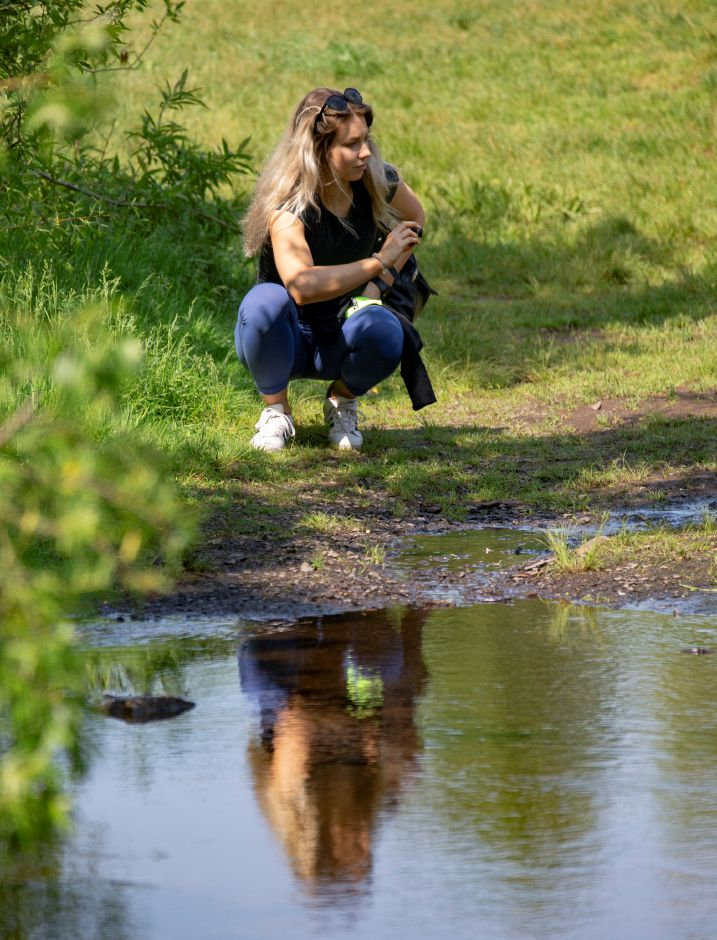 Healthy Living writer Kristen Dearborn crouches down to get some shots at Guiffrida Park in Meriden May 31, 2019. | Richie Rathsack, Record-Journal