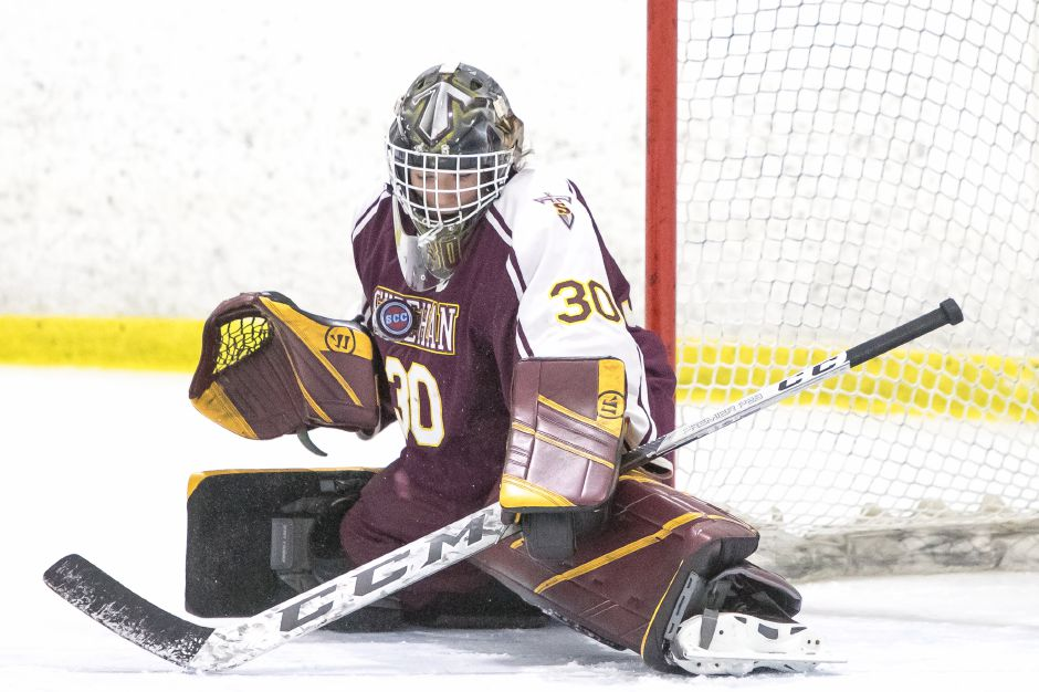 Goalie Tyler Robertson and the Sheehan Titans defeated Daniel Hand 2-1 the last time the two teams met. That was in the SCC/SWC Division III Tournament semifinals. The teams meet again Monday, this time in the CIAC Division III state semifinals at Ingalls Rink. | Justin Weekes / Special to the Record-Journal