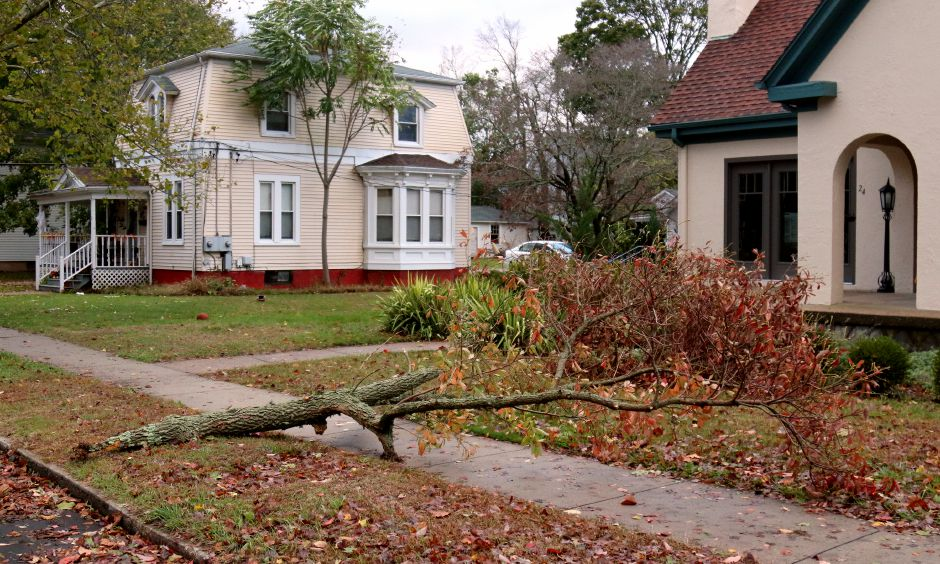 A large tree limb lies in front of a Moss Street home in Pawcatuck brought down by the powerful storm that struck the region overnight on Monday, Oct. 30, 2017. | Harold Hanka, The Westerly Sun