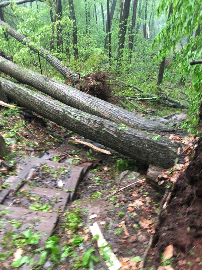 Damage at Sleeping Giant State Park after a Tuesday, May 15, 2018 storm that produced a tornado. | Photo Courtesy Hailey Wilson, HIKED Productions