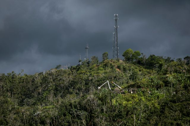 In this July 12, 2018 photo, ladders from the Puerto Rico Power Authority stand amid the trees as workers restore power that was lost due to Hurricane Irma and Maria in Adjuntas, Puerto Rico. Lights are slowly coming on for the more than 1,000 homes and businesses across the island that remain without power in hard-to-reach areas. (AP Photo/Dennis M. Rivera Pichardo)