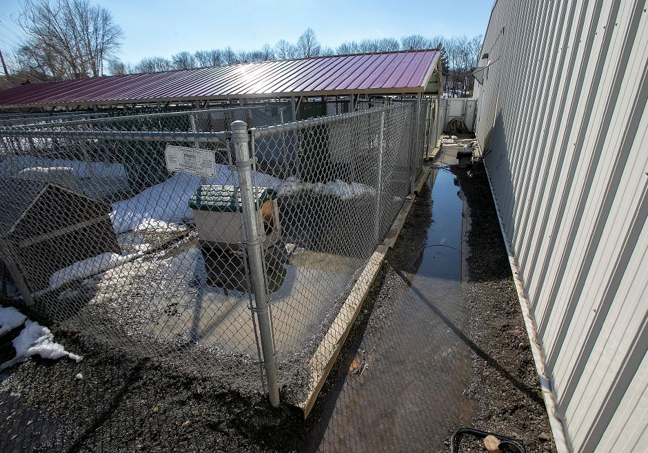 Flooded kennels at the Meriden Humane Society, Mon., Mar. 11, 2019. Eversource has donated funds to resolve the recurrent flooding issue. Dave Zajac, Record-Journal