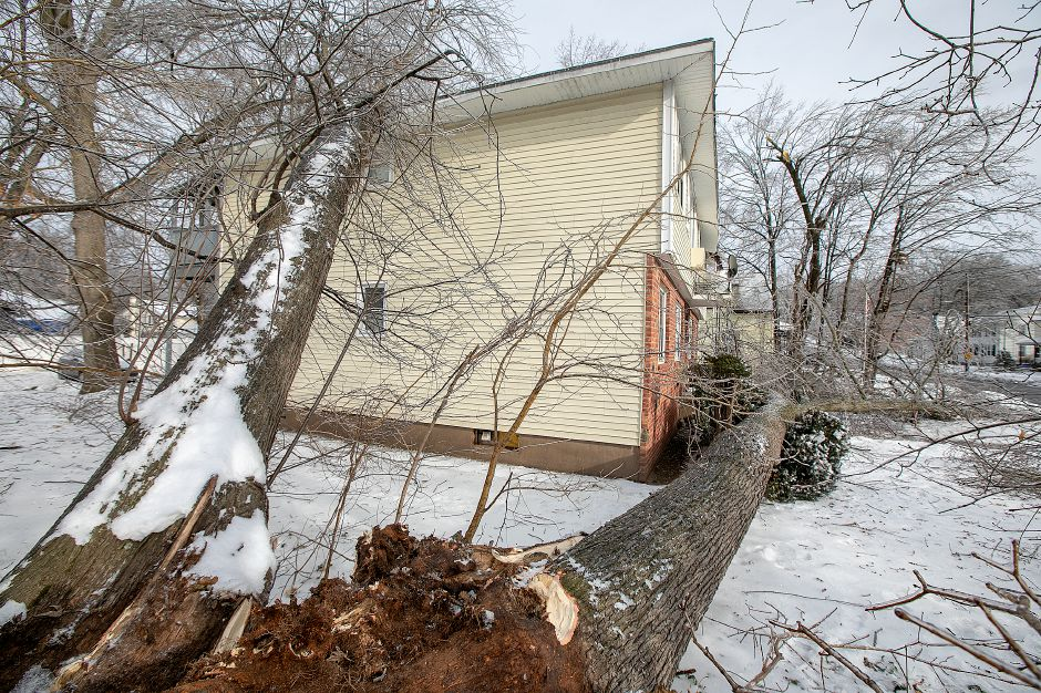 Fallen trees damaged this residence at 35 High St. in Wallingford, Mon. Jan. 21, 2019. Dave Zajac, Record-Journal