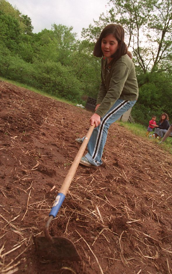RJ file photo - Jessica Camera, 10, of Wallingford, puts a hoe to the earth at an intergenerational garden in Wallingford. The were planting beans, May 1999.