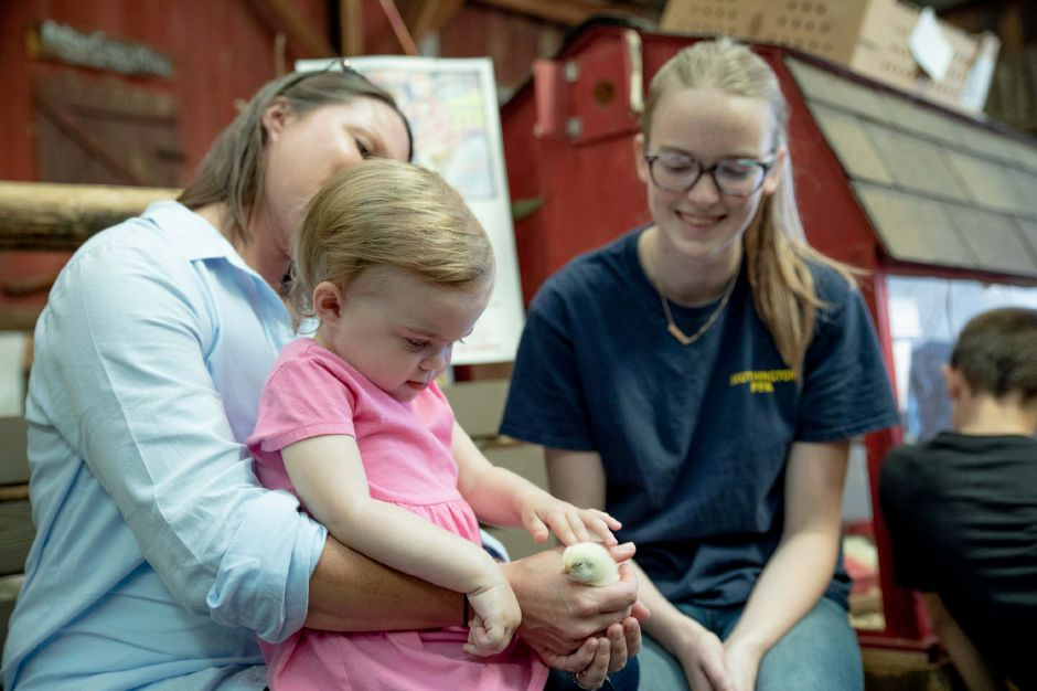 Grace Liegeot, 2, puts a chick being held by her mother, Kate Liegeot, of Berlin with some help from Southington High School Student Skye Zettervall. The school