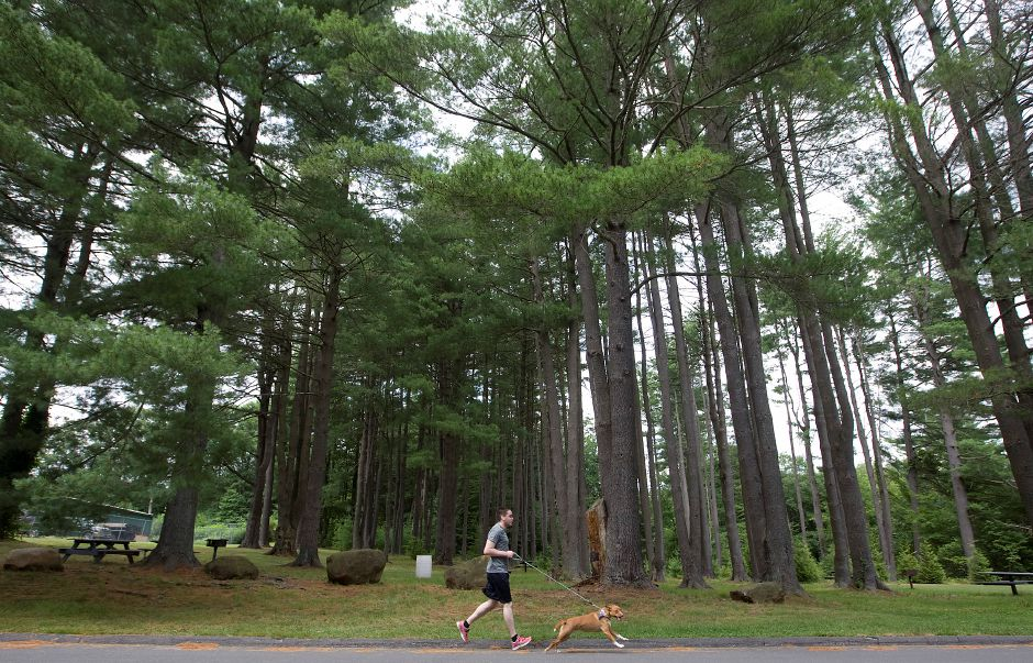 "Panthorn Park ranks seventh on TripAdvisor.com's list of things to do in Southington. In this file photo, Chris Graziano, of New Britain, jogs with dog ""Penny"" on July 12, 2013. Graziano was in town visiting his father Mark, a Southington resident. (Dave Zajac/Record-Journal)"