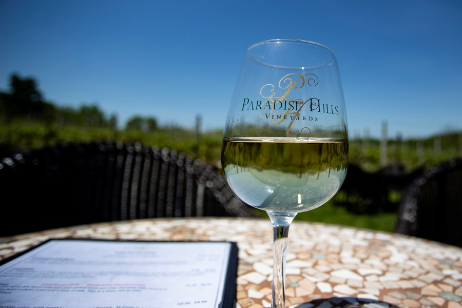 Paradise Hills Vineyards in Wallingford offers a beautiful outdoor setting for enjoying a glass of wine. | Richie Rathsack, Record-Journal