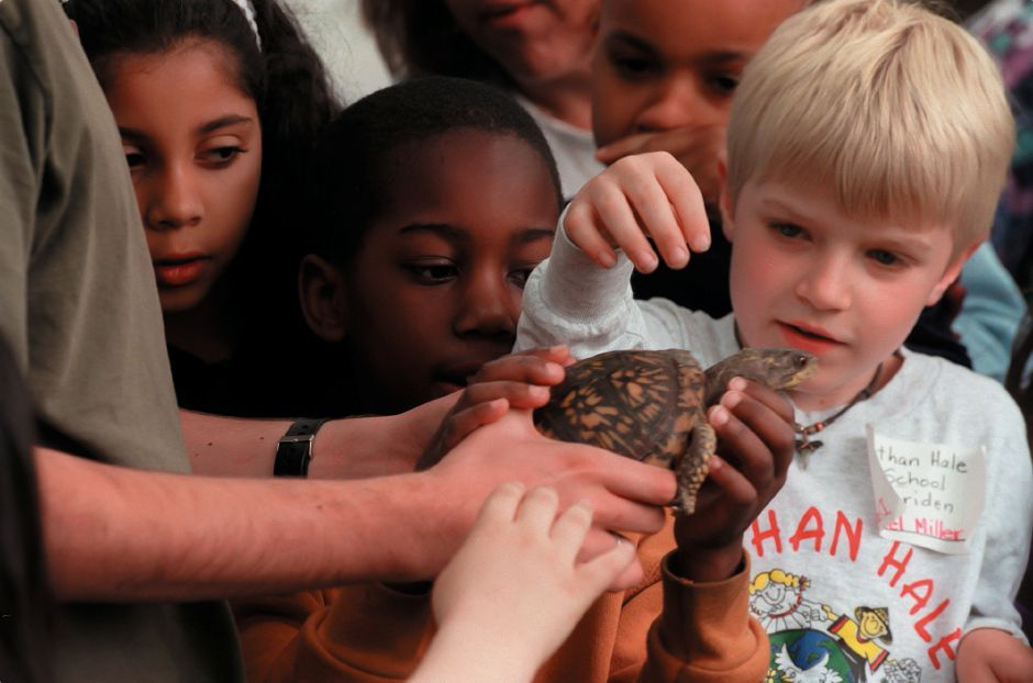 RJ file photo - Daniel Miller of Meriden and other Nathan Hale students touch a turtle during the vo-ag fair at Lyman Hall High School, May 1999.