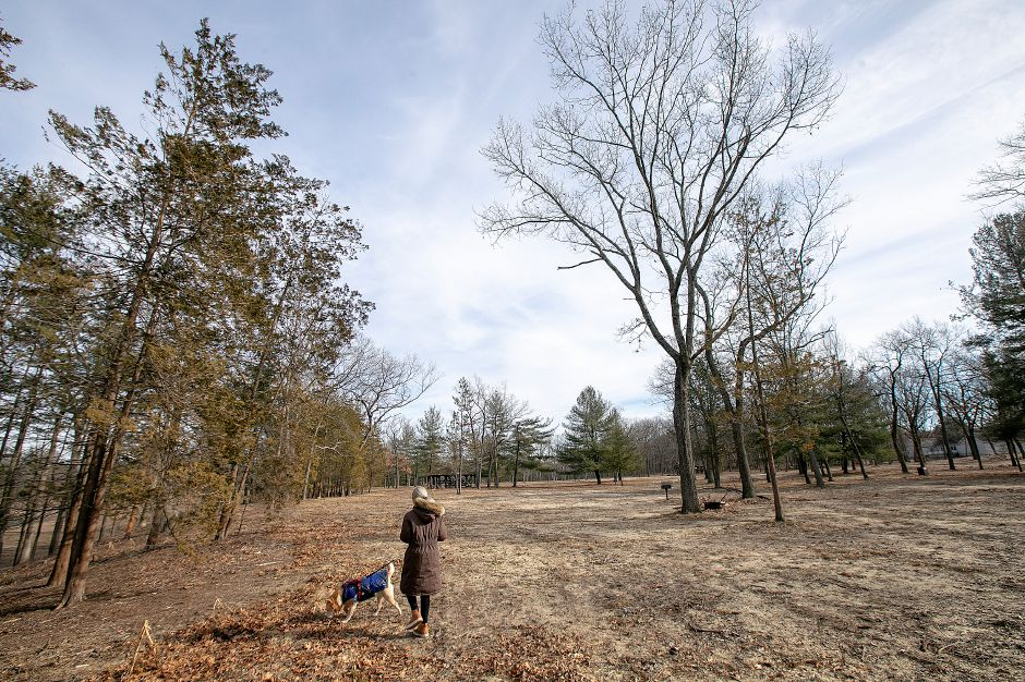 Emily Li, of North Haven, walks dog Phoebe at Wharton Brook State Park in Wallingford on Tuesday. The park has reopened after a microburst in May of 2018 shut it down. Dave Zajac, Record-Journal