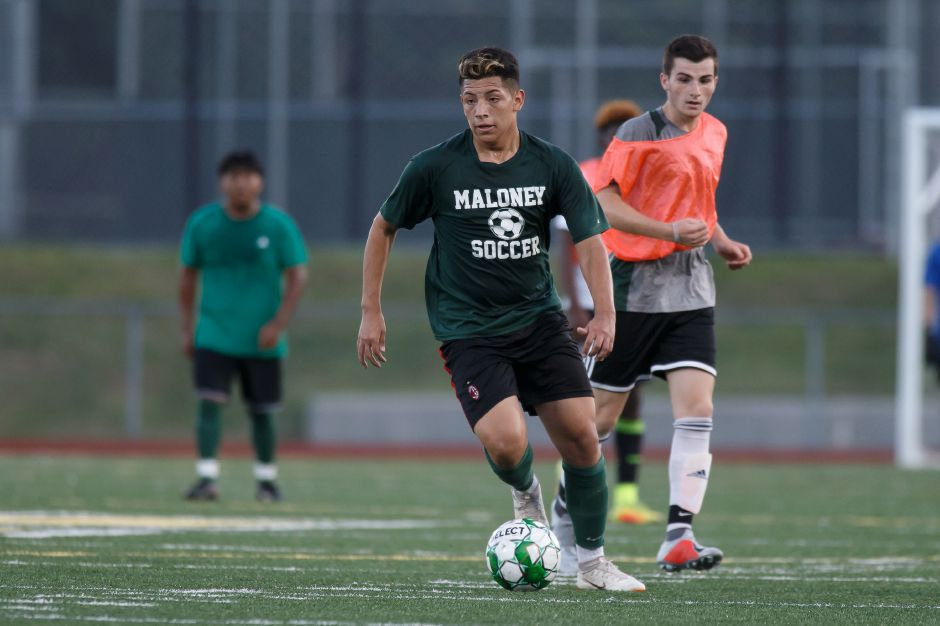 Dannys Blandon is among the promising newcomers for the Maloney Spartans, who are replacing 10 seniors.