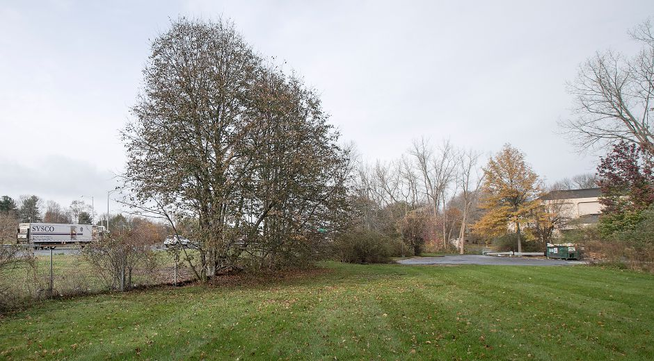 Land next to I-91 and Route 15 behind 10 Bee St. in Meriden, Monday, Nov. 13, 2017. | Dave Zajac, Record-Journal
