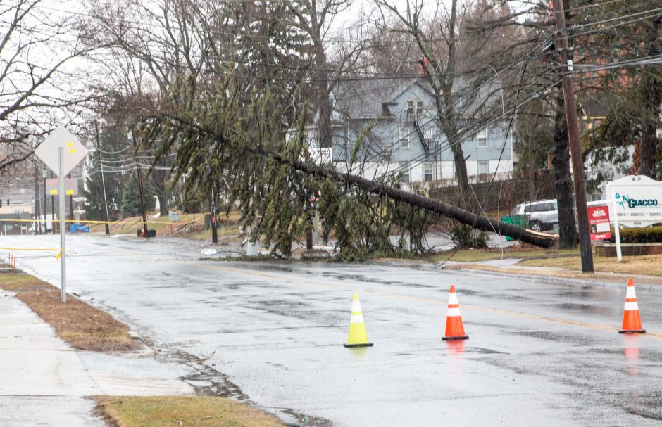 Emergency crews responded to a tree which had fallen on power lines on Broad Street in Meriden. Thousands were without power in the Meriden region as trees and branches damaged lines. | Devin Leith-Yessian/Record-Journal
