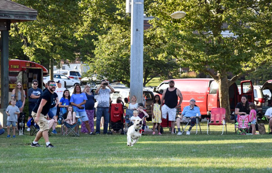 Keith Massimino throws a frisbee for his dog Meadow to catch during a Skyhoundz competition on Thursday, August 1, 2019, at Doolittle Park in Wallingford. | Bailey Wright, Record-Journal