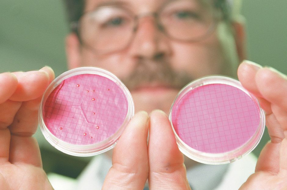 RJ file photo - Andrew M. Burke, of EML Inc., displays a positive test for coliform bacteria on the left, and a negative test on the right. Each dot is a coliform colony - Aug. 1998. Tests from nearly 50 wells in Wallingford and Southington have shown the presence of coliform.