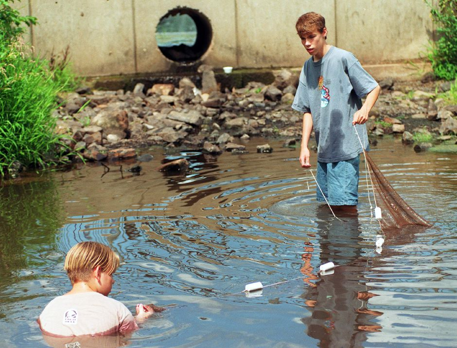 Dallas Burke(L), age 14, and his buddy, Dave Faust, age 13, both from Southington, scoop up some Sunfish and Perch in their net at Rec Park Aug. 23, 1999.