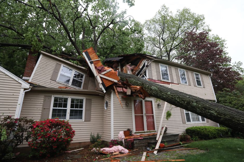 A tree on a house at 120 Bellamy Road in Cheshire. | Photo by Dave Zajac.