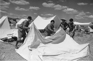 Hawaii Boy Scouts of Troop 12 are at the 7th National Jamboree Boy Scouts of America, being held at Farragut State Park, Idaho, July 17, 1969. Raising their tent after arrival are, left to right: Warren Mitsunaga, Wade Wasano, David Cambra and Tommy Fo. (AP Photo/Charles Knoblock)