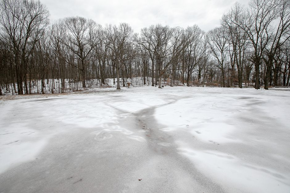 The ball field area at Lufbery Park on Cheshire road in Wallingford, Fri, Feb. 15, 2019. The Recreation Commission is considering a redesign of Lufbery Park. Dave Zajac, Record-Journal
