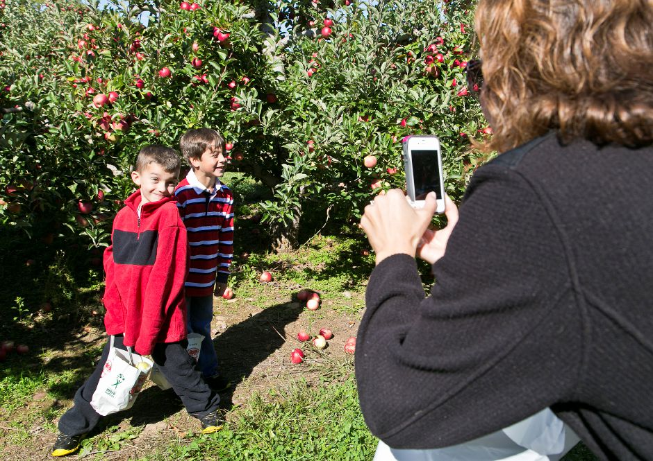 Roger Orchards tops the list of things to do in Southington, according to TripAdvisor.com. In this file photo, Brooke Stanziale, right, takes a picture of her son, Troy Stanziale, 5, and his friend, Aldo Fernandez, 5, all from Cheshire, while they pick apples, Oct. 14, 2013. | Christopher Zajac / Record-Journal